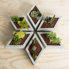 Muuch Rhombus Modular Flowerpot by Estudio Floga. Cement Art, Concrete Pots, Concrete Crafts, Concrete Projects, Concrete Design, Concrete Planters, Diy Planters, Decoration Minnie, Pot Jardin