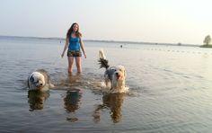 Elina, Aydan en Balou in het Zuidlaardermeer