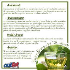 Una de las bebidas con más beneficios para el ser humano el es té verde ya que aporta muchísimas propiedades, como por ejemplo: es antioxidante, nos ayuda a mantener una dentadura sana y además es ideal para perder peso. Y es uno de los 4 componentes Activos de nuestro producto Outfat Complex, #Adelgazante #Natural
