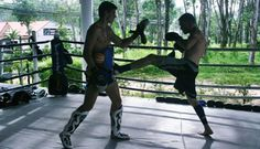 Muay Thai Gym Phuket | Gym Facilities Phuket Top Team - meal plan - various certifications and lessons