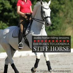 Exercises to Loosen a Stiff Horse Assess yourself for stiffness – I highly recommend Yoga – which you may be transferring to your horse
