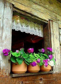 Ventanas y flores Old Windows, Windows And Doors, Rustic Windows, Exterior Windows, Garden Windows, Purple Home, Lace Curtains, Vintage Curtains, Window View