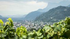 #herbst #wandern #waalweg #tscherms #visitlana #southtyrol #südtirol #meranerland #holidays