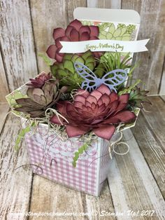 A great idea for Mother's Day, Birthday, Easter, Get Well. Don't you love the Succulent Garden Designer Series Paper. Easter Garden, Diy Garden, Garden Boxes, Succulent Gardening, Succulents Garden, Organic Gardening, Fabric Flowers, Paper Flowers, Screen Cards