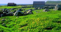 jæren, norway Arctic Circle, North Sea, Finding Peace, New Mexico, Finland, Norway, Scandinavian, Destinations, Lavender