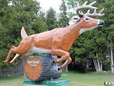 Deer Ranch, Leaping Deer Statue in St. Ignace, Michigan: