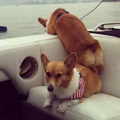 Motor-boating!-Hey why aren't you wearing your life jackets?