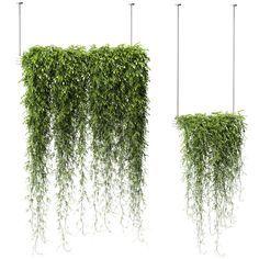 models: Indoor - Plants in Hanging Planters 2 models Hanging Plants Outdoor, Hanging Flower Pots, Indoor Planters, Modern Planters, Plants Indoor, Unique Gardens, Beautiful Gardens, Landscape Architecture, Landscape Design