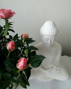 #buddha # Caroline Julita photography