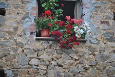 Ventana rustica repleta de flores