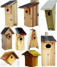 #birdhousekits