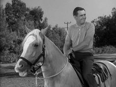 Mister Ed , The Jumper Season 2, Alan Young