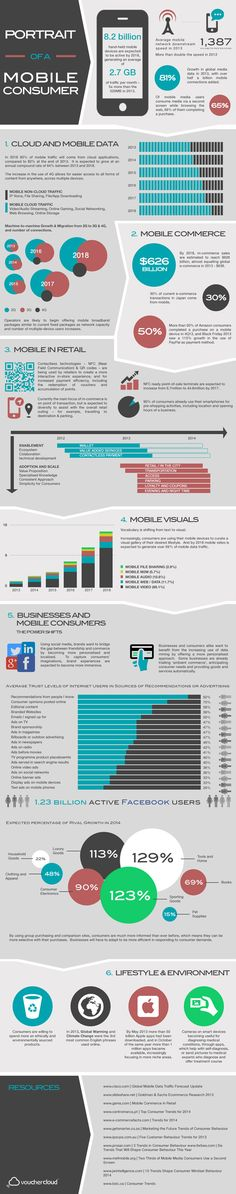 Portrait of A Mobile Consumer Infographic