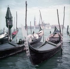 For Sale on - Slim Aarons - Venice Gondolas - Estate Stamped, C Print by Slim Aarons. Offered by Galerie Prints. Slim Aarons Prints, Gondola Venice, Star Of The Day, Taking Pictures, Image Collection, Photographic Prints, Landscape Photography, Gallery, 3 Weeks