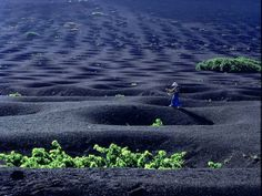 Awesome Lanzarote volcanic landscape!