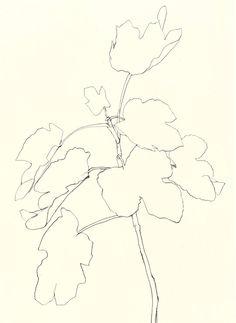Ellsworth Kelly, Fig, 1982