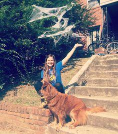 #halloween prep  @katielovessharks