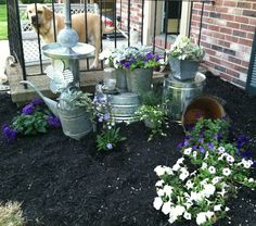 I was inspired by a galvanized garden I saw on Pintret. This is going to be similar to my creation! Metal Buckets, Galvanized Metal, I Saw, Gardens, Inspired, Plants, Outdoor Gardens, Plant, Garden