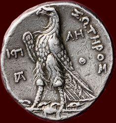 Tolomeo II Philadelphos (285-246 A.C.). Tetradramma AR coniata a Giaffa (Gaza). VZ: Ritratto di Ptolemaios ho n.r. con copricapo. KZ: (PTOLEMAIOY) SWTHPOS-Aquila in piedi n.l. il fulmine. Monogrammi in campo a sinistra. Θ ΛΓ legali Letteratura: BMC 144var.; Svoronos 816.  Dopo la conquista dell'Egitto da Alessandro Magno il paese passò sotto il controllo dei greci. Dopo la morte di Alessandro il suo impero fu diviso sotto i suoi generali e ha dato luogo al cosiddetto diadochenrijken. Egitto…
