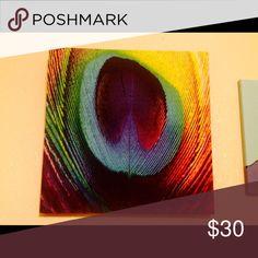 Large peacock color canvas art 16x16 Accessories