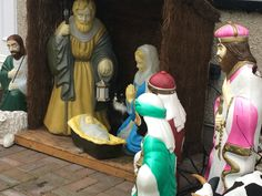Our cat Loki invaded next doors Nativity Scene, His face is hilarious