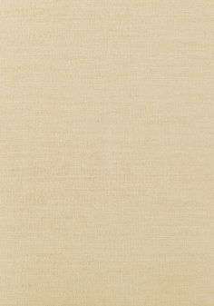 COASTAL SISAL, Wheat, T14111, Collection Texture Resource 4 from Thibaut