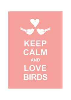 Keep Calm and Love Birds  Baby Pink / BUY 2 by simplygiftsonline, $10.80