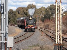 D639 at Castlemaine Railway Station after it arrived from Melbourne (Victoria Australia) by Catherine McPhie