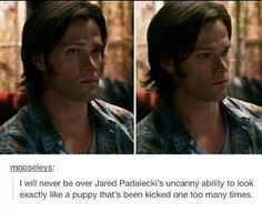 Sam Winchester is real because Jared Padalecki is real
