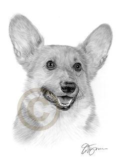 Image result for corgi sketches