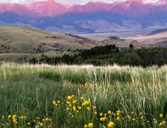 I have many great memories of traveling in Montana. One so my favorite states