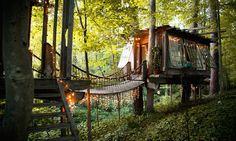 Ambientalista reaproveita materiais e constrói casa na árvore dos sonhos em meio à natureza