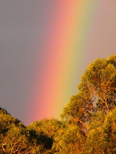 Beautiful rainbow.....beautiful Creations....Love rainbows!!