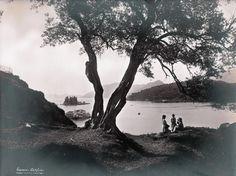 6 antique photos Corfu Greece, 1900s, photographers Borri & Figlio