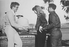 James Dean, Julie Harris and Elia Kazan Old Hollywood Actors, Hollywood Icons, American Idol, American Actors, Elia Kazan, James Dean Photos, East Of Eden, Jimmy Dean, Icons
