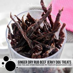 Ginger Dry Rub Beef Jerky Dog Treats - Dalmatian DIY Diy Dog Treats, Homemade Dog Treats, Dog Treat Recipes, Dog Food Recipes, Hypoallergenic Dog Treats, Homemade Jerky, Making Jerky, Dog Crafts, Beef Jerky