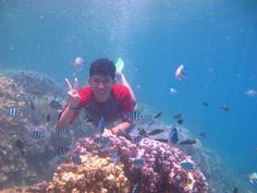 Karimun Jawa  Indonesia #wonderfulindonesia