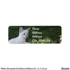 White Savannah Cat Return Address Sticker Label