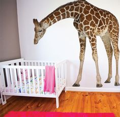 Bending giraffe wall sticker can be made to face either left or right, and stands at 225cm high; $249.95 from The Wall Sticker Company. http://www.essentialbaby.com.au/toddler/toddler-products/wild-wall-stickers-for-the-nursery-20130405-2hamh.html