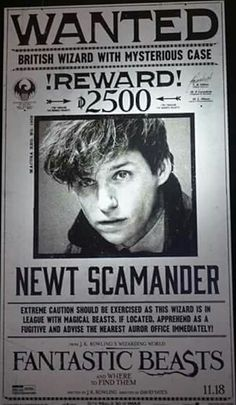 In ONE MONTH, discover a brand new adventure in Fantastic Beasts. - Newt Scamander - Fantastic Beasts and Where to Find Them