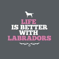 Life Is Better With Labs tee $29