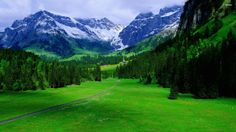#Switzerland  http://www.survivalsuperstore.co.uk/