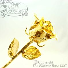 The Forever Rose - The Original Gold Dipped Rose! Handcrafted from real roses, plated in real 24K gold!