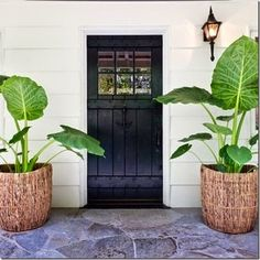 love the front door!