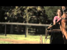 Horse video - This is the American Saddlebred! - YouTube - from the American Saddlebred Horse Association