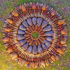 "The American artist Kathy Klein, professing Buddhism, creates unusual arrangement of flowers, cones and vegetables, filled with spiritual content. Her works are a kind of mandala - schematic sacred circles for meditation, which she calls ""danmalami"" (in Sanskrit - ""gifting flower garlands"")."