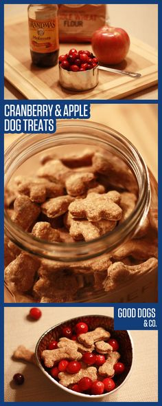 Make your dog some seasonal dog treats, with cranberries! Perfect for fall and winter.