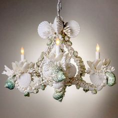 View this item and discover similar for sale at - Marvelous one-of-a-kind shell encrusted chandelier in a hard to find small size. This four-light chandelier handcrafted with beautiful natural shells and Seashell Chandelier, Seashell Ornaments, Seashell Art, Seashell Crafts, Chandelier Pendant Lights, Beach Crafts, Modern Chandelier, Iron Chandeliers, Beach House Decor