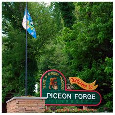Pigeon Forge has so many fun attractions! It's hard to narrow them down to just a couple!