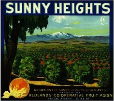Redlands- Sunny Heights Orange Citrus Fruit Crate Box Label Art Print. $9.99, via Etsy.